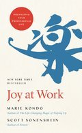 Cover image for Joy at Work
