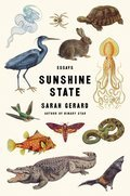 Cover image for Sunshine State