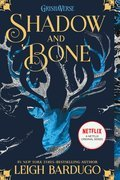 Cover image for Shadow and Bone
