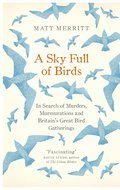 Cover image for Sky Full of Birds