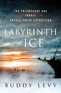 Cover image for Labyrinth of Ice
