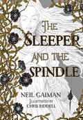 Cover image for Sleeper and the Spindle
