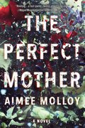 Cover image for Perfect Mother