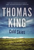 Cover image for Cold Skies