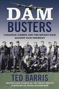 Cover image for Dam Busters