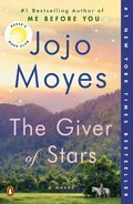Cover image for Giver of Stars