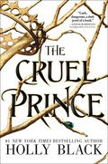 Cover image for Cruel Prince