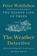 Cover image for Weather Detective
