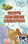 Cover image for God's Amazing Creation